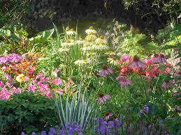 flower garden plans. Perennial Flower Garden Designs Plans S