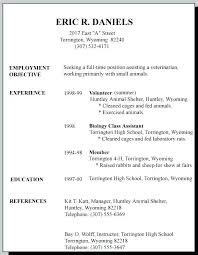 High School Resume Format Stunning Job Resume Formats Sample Resume Format For Job Interview For