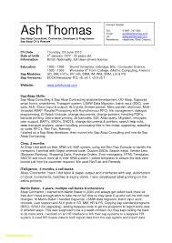 It Consultant Resume Sample Download Now Resume Senior It Consultant