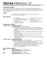 Examples Of Perfect Resumes Simple Perfect Resume Examples Example Of Perfect Resume As Example Of