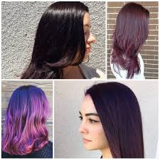 Purple Hair Style 2017 plum hair color trend new hair color ideas & trends for 2017 2292 by wearticles.com