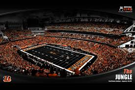 cincinnati bengals wallpaper 18 2560 x 1707