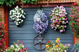 create a hanging basket display