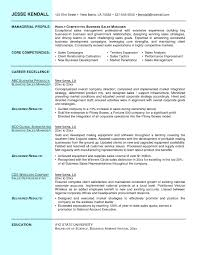 Chic Sales Manager Resume Sample 2013 For Professional Practice