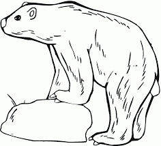 Download Coloring Pages. Bear Coloring Pages: Bear Coloring Pages ...