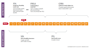 Fmla Cfra Chart Maneuvering Through Maternity Leave Family Off The Map