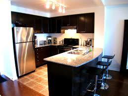 Kitchen Design Must Haves Apartments Tasty Kitchen Condo Decorating And Window Treatments