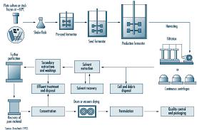 Paracetamol Manufacturing Process Flow Chart Paracetamol Manufacturing Process Medicine Manufacturing