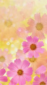 1080x1920 Flower Nice Flori Wallpapers HD