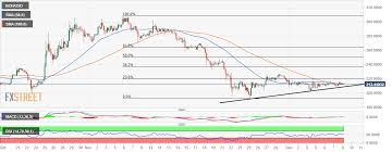 Bitcoin Cash Price Analysis Bch Usd Marinates The Next