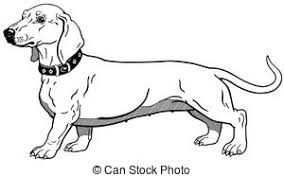 cute dog clipart black and white.  And Dachshund Black White  Dog Smoothhaired Dachshund With Cute Dog Clipart Black And White B