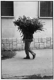 花束を抱えて歩く男性02265022992の写真素材イラスト素材アマナ