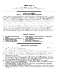 Clinical Director Resume Executive Director Resume Executive