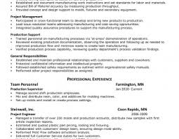 Internal Auditor Resume Objective Internal Auditor Resume Objective Commonpence Www Omoalata Com Job 64