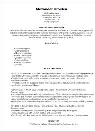 Example Resume Letter Classy Customer Service R Resume Summary Examples For Customer Service On