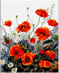 handwork gift red poppies flower picture on canvas acrylic paints painting by numbers vintage home decor wall art pictures e322 in painting calligraphy