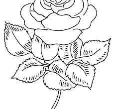 Below the table of coloring pages are included some interesting facts about roses. Coloring Pages Coloring Pages Rose Printable For Kids Adults Free To Download