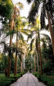 Garden Centre Kitchener 17 Best Images About Park Tropical On Pinterest Bali Garden