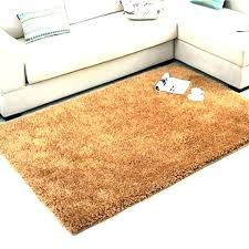 waterproof outdoor carpet home depot indoor roll area rugs rug pad out