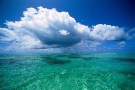 Интересные факты об океанах Интересные факты из жизни Давление