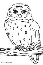 Owl Coloring Owl Coloring Pages Owl Coloring Pages Owl Coloring