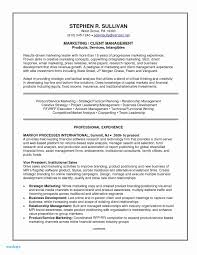 Example It Resume Resume