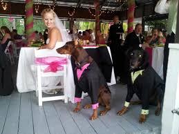 Rental Wedding Dresses Orlando Fl