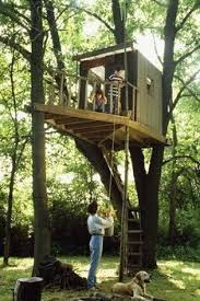 30 Free DIY Tree House Plans to Make Your Childhood or Adulthood