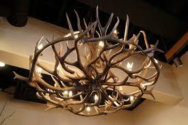 whitetail antler chandelier antler chandelier elk chandelier