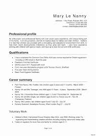 Resume Profile Examples For Students Resume Profile Examples 100 Example Template 80