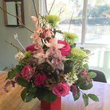 photo of la costa farms flowers encinitas ca united states