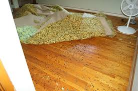 how do i remove stuck melted foam from under carpet on hardwood floor