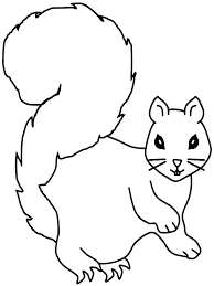Squirrel Pictures To Color Squirrel Free Squirrel Coloring Page