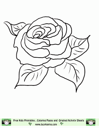 Rose color palettes with color ideas for decoration your house, wedding, hair or even nails. Free Printable Pictures Of Roses Coloring Home