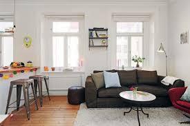 Amazing Apartment Living Room Decor Ideas Of Apartment Living Room Ideas  For Small Space Home Interior