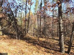 L3B1 Eagle Ridge Drive Baxter MN 56425 MLS 4772581 Edina Realty