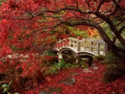 Small Picture Feng Shui Garden Design Tips