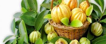 Pure Garcinia Cambogia has the right things to reinforce health benefits of end users