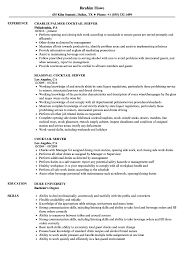 Sample Server Resume Cocktail Server Resume Samples Velvet Jobs 14