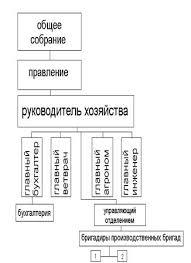 Курсовая работа Учёт сельскохозяйственной продукции в СПК quot  СХЕМА 1 СТРУКТУРА УПРАВЛЕНИЯ ХОЗЯЙСТВА