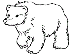 Mammals Coloring Pages 1 For Toddlers Preschool And Kindergarten