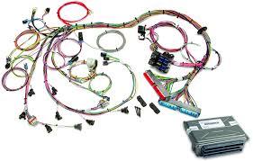 1998 2004 gm ls1 ls6 efi harness vats removed ecm painless 1998 2004 gm ls1 ls6 efi harness vats removed ecm by painless performance