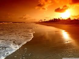 Resultado de imagem para sol praia