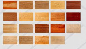 types of timber for furniture. Various Timber Species Types Of For Furniture Y