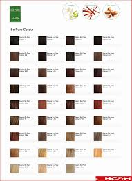 Hair Color Conversion Chart 153113 Pyure Conversion Chart