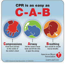 Emergency Medicine Blog 2010 Aha Guidelines On Ecc And Cpr