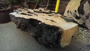 Tree Root Coffee Table Disaster....................... DSNERV   YouTube Nice Design