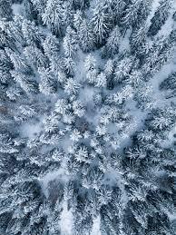 Aesthetic Winter Wallpaper Ipad