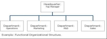 Organisational Structure And Different Types Of Structures