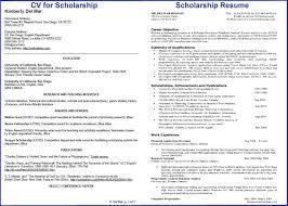 Scholarship Resume Custom Scholarship Resume Template New 40 Design Fun Resume Templates
